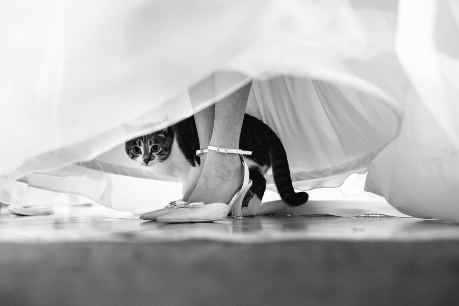 Bergeggi Savona Fotografo per Matrimoni